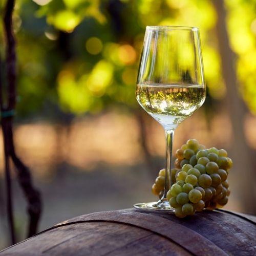 יין לבן מומלץ ולא יקר – האם יש דבר כזה?